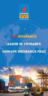 pvi-insurance