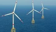 Shell: Phát triển dự án trang trại điện gió nổi khổng lồ ngoài khơi Hàn Quốc