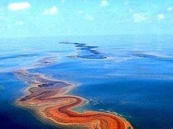Sự cố tràn dầu vịnh Bột Hải, Trung Quốc
