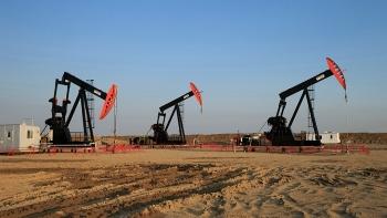 Mỹ và Canada tiếp tục đấu giá giấy phép các lô dầu khí