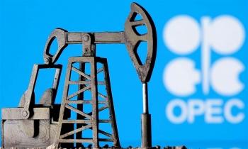 Kết quả họp Ủy ban giám sát OPEC+