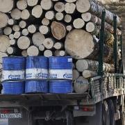 """Gazprom có phải """"bán con"""" để cầm cự qua kỳ khó khăn?"""
