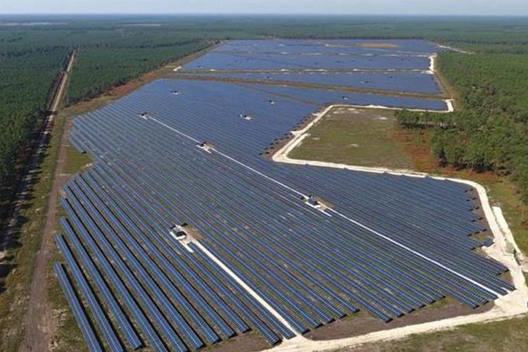 Engie và Neoen công bố dự án năng lượng mặt trời khủng