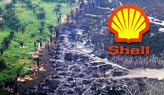 Nông dân Nigeria giành chiến thắng trong trận chiến pháp lý quan trọng với Shell