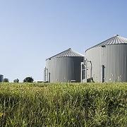 Chevron tăng cường sản xuất khí đốt tự nhiên tái tạo từ phân bò