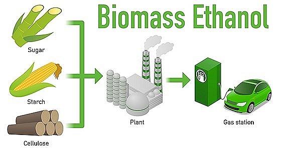 Lần đầu tiên sau 20 năm, cơn khát nhiên liệu sinh học hạ nhiệt