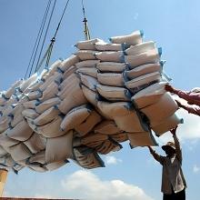 Tin tức kinh tế ngày 17/9: Xuất khẩu gạo ngày càng thêm khó